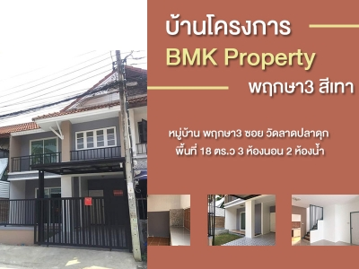 บ้านโครงการ BMK Property พฤกษา3 สีเทา
